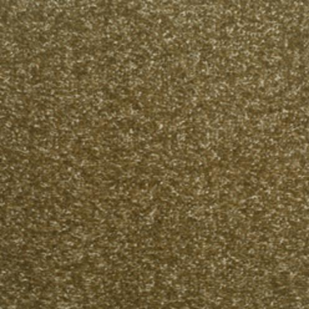 Champion Twist Carpet - Wild Mushroom
